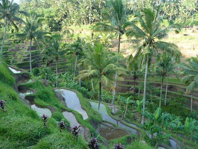 6-Daagse Luxe Ziel Yoga Retraite in Bali, Indonesië