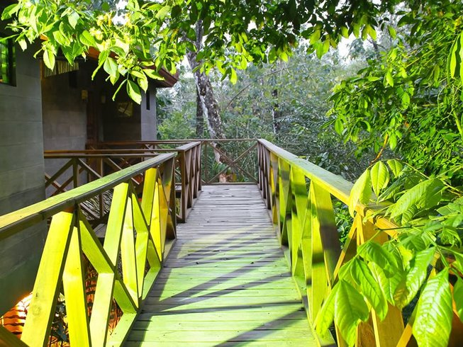 21 jours de stage de yoga detox au Costa Rica