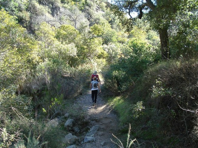 7 Days Hiking, Cleansing, and Yoga Retreat in California