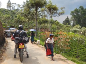 20 Day Sri Lanka Mountains and Coast Guided Motorcycle Tour