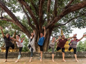 11 Days Ashtanga Yoga and Photography Retreat in Siem Reap, Cambodia