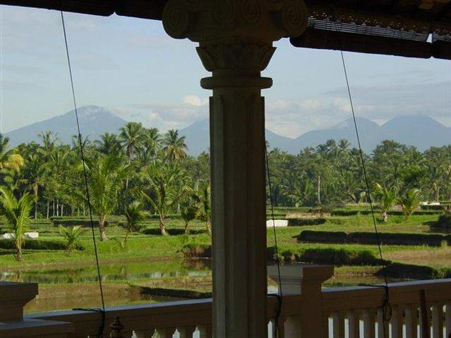 4 Days Kick Start To Wellness Detox Retreat in Bali