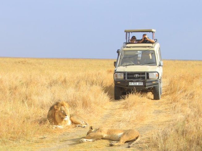 4x4 safari landcruiser in serengeti