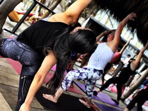 23 Days 200 Hours Hatha Vinyasa Yoga Teacher Training Course in Barranquilla, Colombia