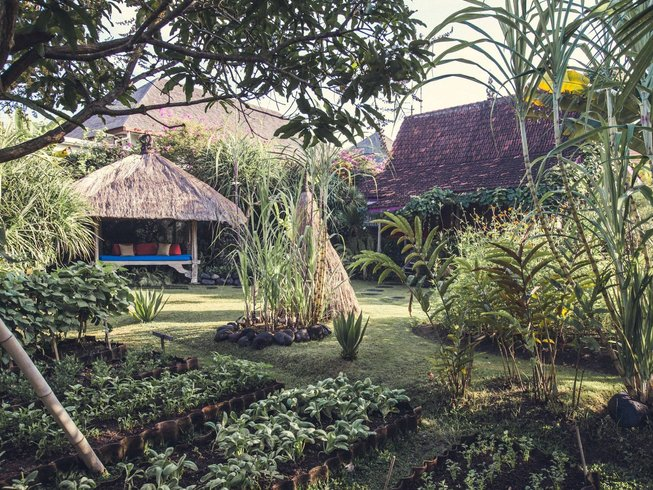 8 Days Alkaline Lifestyle and Yoga Retreat in Bali