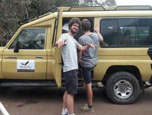 Lake Manyara and Ngorongoro Crater 4 Days Family Safari in Tanzania