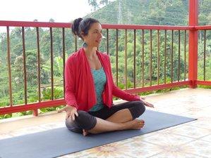 5 Tage Kaffee, Wellness und Yoga Urlaub in Manizales, Kolumbien