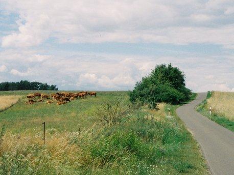 Lunow-Stolzenhagen
