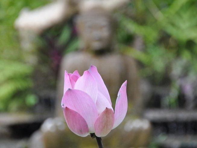 7 Days Wellness Yoga Retreat in Ubud, Bali