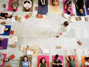 28 Day 200 Hours Hatha Yoga Teacher Training by Yoga Vini in Rishikesh