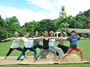 12 Days Volunteering New Year's Yoga Retreat Thailand