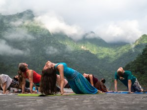 15 Day 200 Hour Multi Style Yoga Teacher Training in Rishikesh - Hatha, Ashtanga & Vinyasa