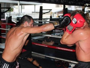 1 Month MMA & Muay Thai in Koh Samui, Thailand