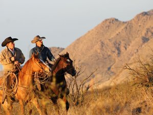 4 Days Ride and Ranch Vacation in Cochise, Arizona