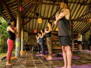 24 Days 200-Hours Master Fusion Yoga Teacher Training in Ubud, Bali