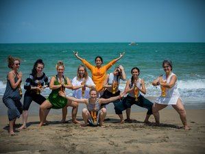 24 Day 200-Hour Authentic Multistyle Yoga Teacher Training in Agonda, Goa