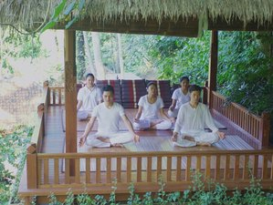 7 Days NLP Training, White Crane, Meditation and Yoga Retreat in Ubud, Bali