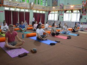 14 Days 100-Hour Mindfulness Yoga Teacher Training in Rishikesh, India