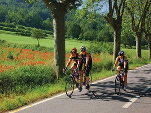 6 Days Pyrenees to Barcelona Bike Tour in Spain