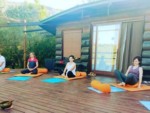 5 Day Online Yoga and Silent Mindfulness Retreat