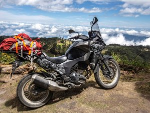 7 Day Guided Coffee Region and Cocora Valley Motorcycle Tour in Colombia