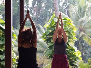 4 Days Detox and Yoga Holiday in Bali, Indonesia