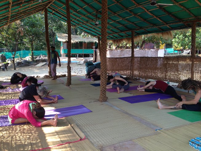 15 Days Ayurveda Panchakarma Detox and Yoga Retreat in India