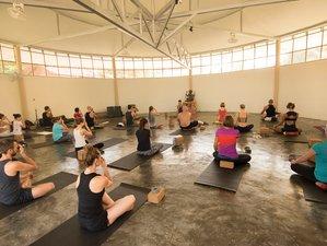 15 jours en stage de yoga rajeunissant à Koh Phangan, Thaïlande