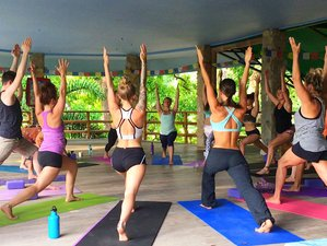 The Epic Academy: 32 Day 200-Hr Vinyasa Yoga Teacher Training in Costa Rica