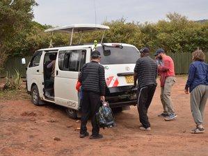 6 Days Masai Mara, Lake Nakuru, and Amboseli Camping Safari in Kenya