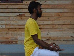 7 días de meditación pacífica y retiro de yoga en Tamil Nadu, India
