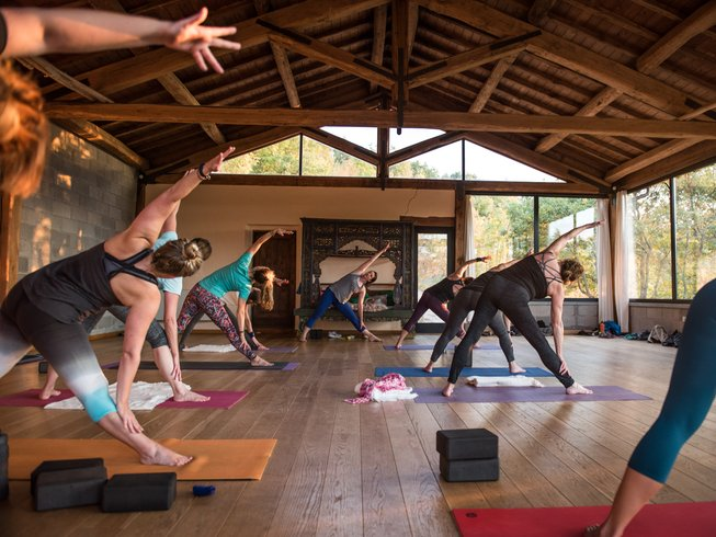 7 Days Journey of the Senses and Yoga Retreat in Oaxaca, Mexico