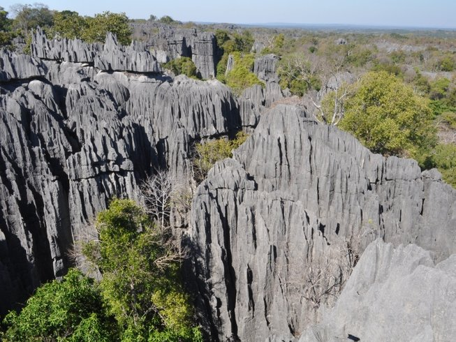 "12 Days ""Land of Contrast"" Safari in Madagascar"