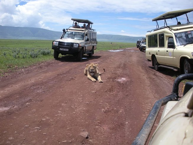 8 Days Ultimate Safari in Tanzania