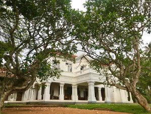 14 Tage Meditation, Yoga Retreat und Ayurveda Behandlung in Galle, Southern Province
