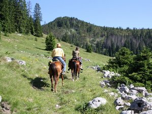 7 Days The Best Horse Riding Holiday in Velika Plana, Croatia