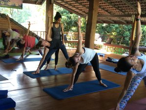 28 Days 300-Hour Hatha & Ashtanga Vinyasa Yoga Teacher Training in Chiang Mai, Thailand