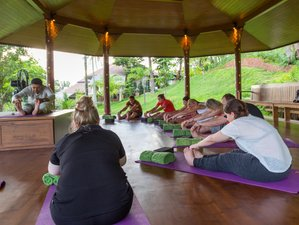 4 Days Vigor Cleanse Program and Yoga Holiday at Mangosteen Resort in Phuket, Thailand