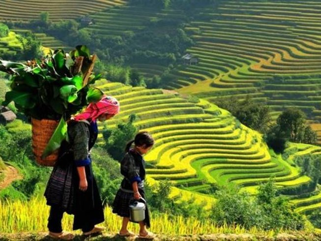 13 Days Culture and Culinary Tours Vietnam
