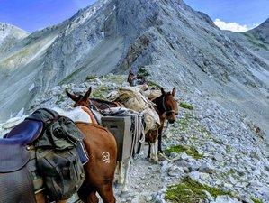 8 Days Chinese Wall Montana Wilderness Horseback Riding Trip in USA