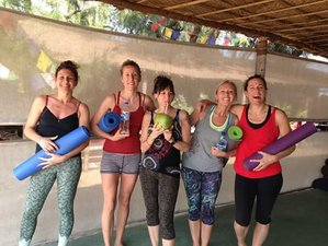 10 Days New Year's Dynamic Yoga Retreat in Goa, India
