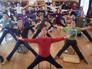 6 Days Medical Qigong and Yoga Retreat in Massachusetts