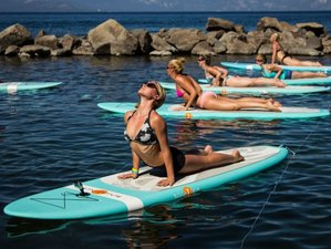 8 Days Acro and SUP Yoga Retreat in Tulum, Mexico