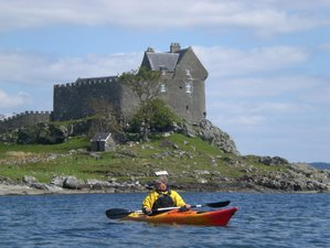 8 Day Food for Free: Food Foraging and Cooking Vacation in Argyll