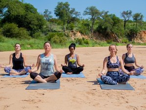 4 Day Luxurious Safari and Yoga Holiday in Timbavati Private Nature Reserve, Hoedspruit