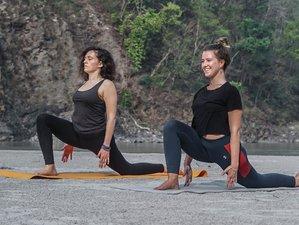 100 Hour Traditional Yoga Teacher Training in Rishikesh, India