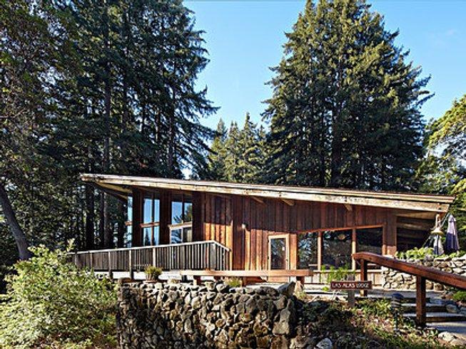 3 Days Redwood Yoga Retreat in California, USA