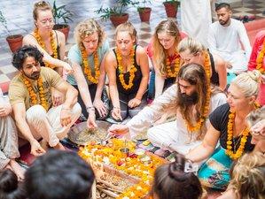 26 Days 200hr Yoga Teacher Training with Naturopathy and Emotional Rebalancing in Rishikesh, India