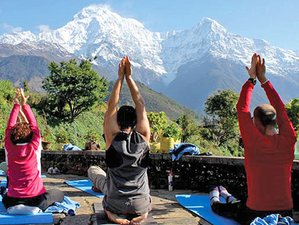 11 Day Discover India and Enjoy a Beautiful Yoga Holiday in the Himalayas, Uttarakhand