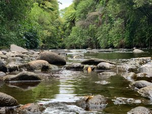 5 Days Life Coaching, Meditation, and Yoga Retreat in Coastal New Zealand